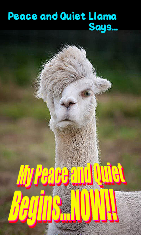 peace_and_quiet_llama